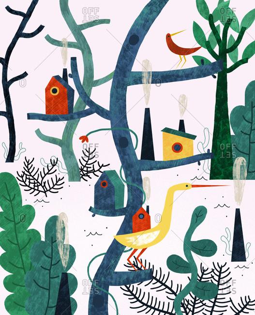 Birds in trees with birdhouses
