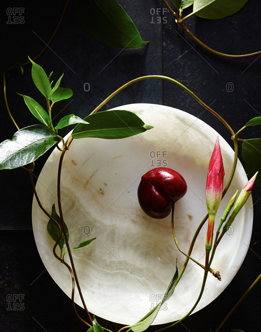 A cherry and vines used for beauty treatments laying on top of a dish