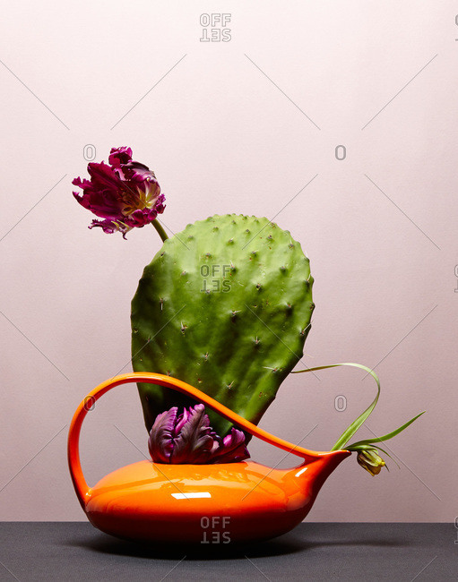 A prickly pear flower arrangement