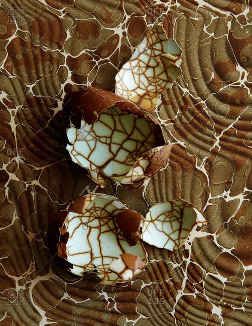 Cracked eggshells against marbled paper
