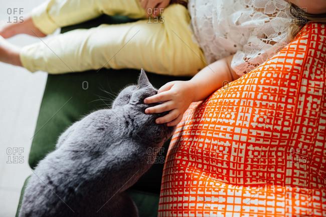 Girl pets her cat