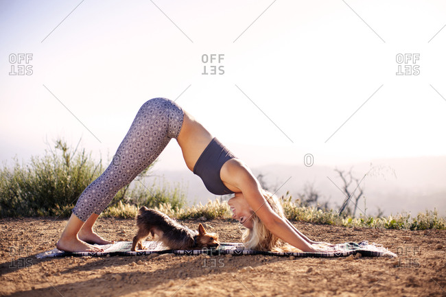 Woman in downward-facing dog yoga pose with her dog