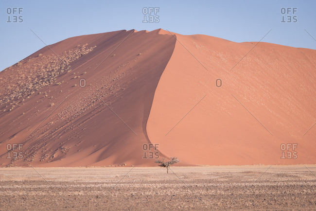 Sand dune in Namibia, Africa