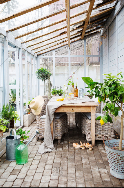 A greenhouse in a Swedish home