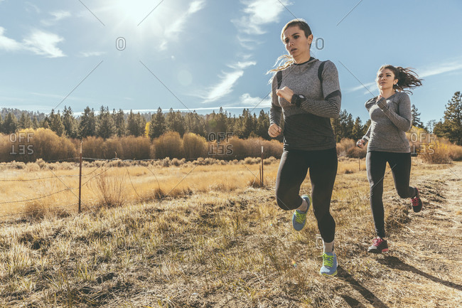 Two people jogging along country road