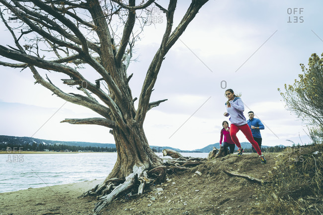 Three people jogging along rugged shoreline