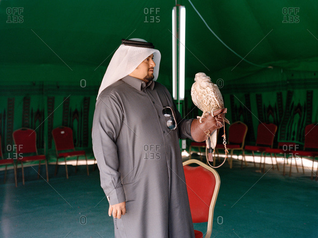 Nariyah, Eastern Province, Saudi Arabia - December 1, 2011: Saudi Arabian man in tent with falcon