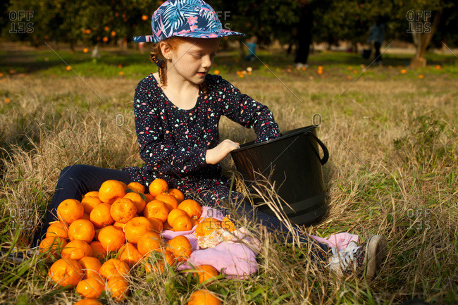 A girl with her orange harvest