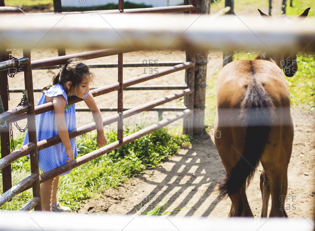 Young girl hanging on a fence of a horse corral