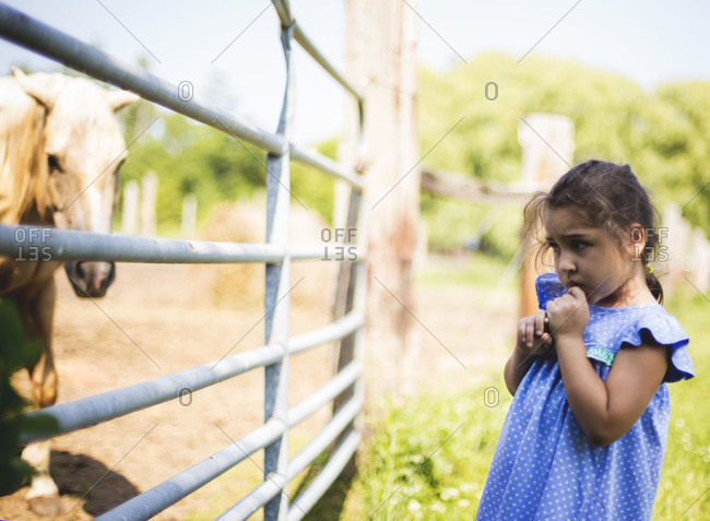 Timid little girl looks fearfully at a horse behind a fence
