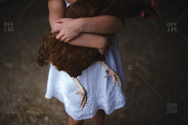 Little girl holding a chicken