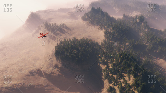 Airplane flying over landscape with pines in morning mist