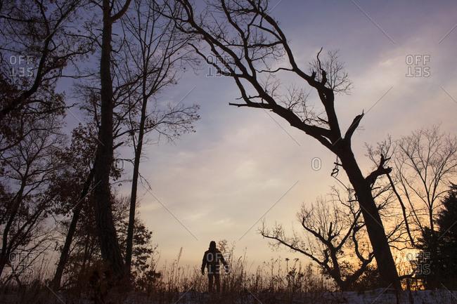 Person alone in a winter landscape