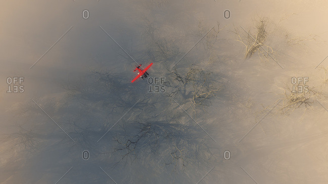 Overhead view of a red float plane flying above strange bare trees