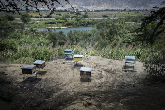 An apiary on a Peruvian farm