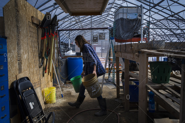 April 2, 2014: A farm manager fetches buckets that collect the water run-off from the hanging seedling beds at a farm in Toronto, Canada