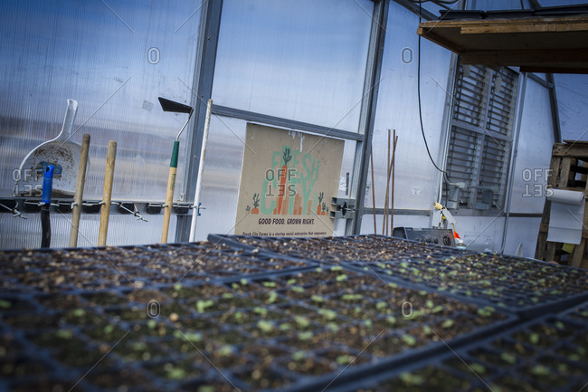 April 2, 2014: Seedlings growing at an urban farm in Toronto, Canada