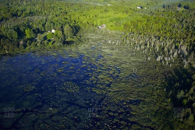 Aerial view of homes, forests and swamp land