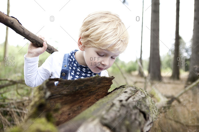 Little boy discovering nature