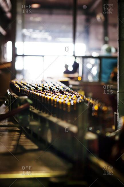 Bottles moving through a bottling plant