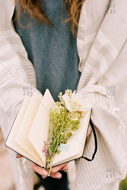 Close up of a woman holding a notebook with wild flowers lying between the pages
