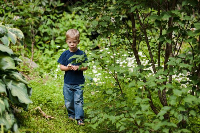 Little boy walking through woods
