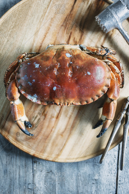 A dungeness crab on a wood tray