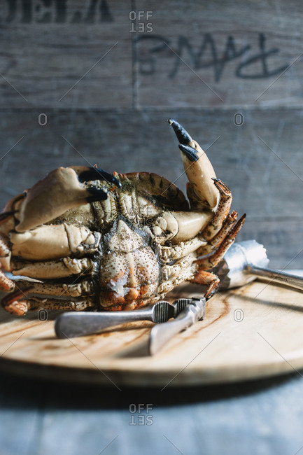The bottom of a crab on a wood tray