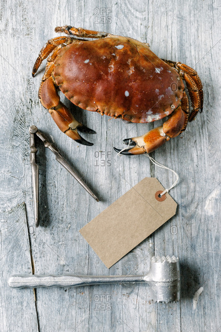 A steamed crab next to a cracker and a mallet
