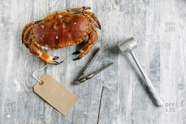 A steamed dungeness crab next to a cracker and a mallet