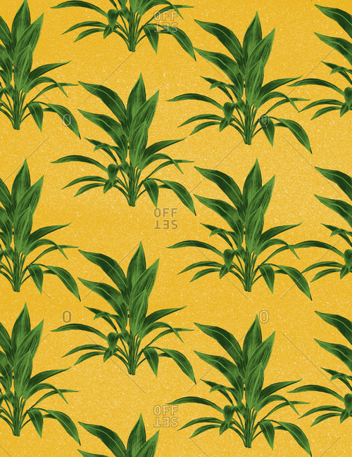 An illustration of leaf bunches against a yellow background