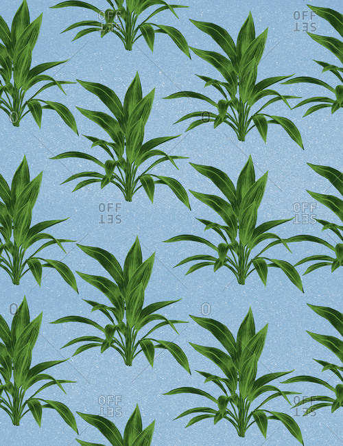 An illustration of leaf bunches against a blue background