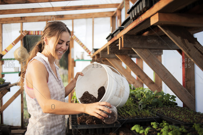 Woman with seedlings in a greenhouse
