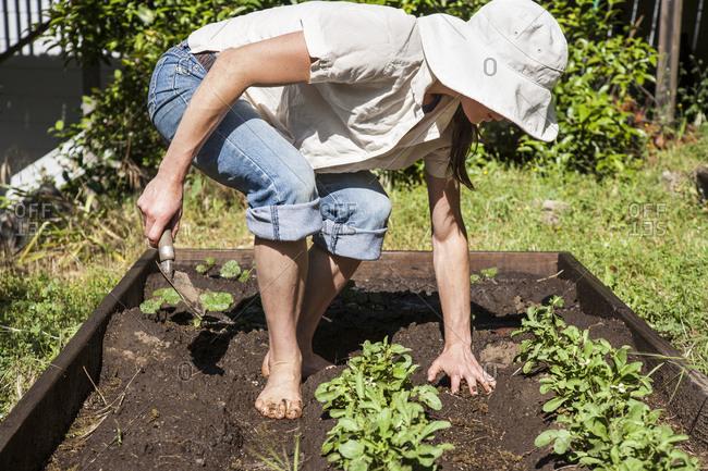 A woman works in her backyard garden