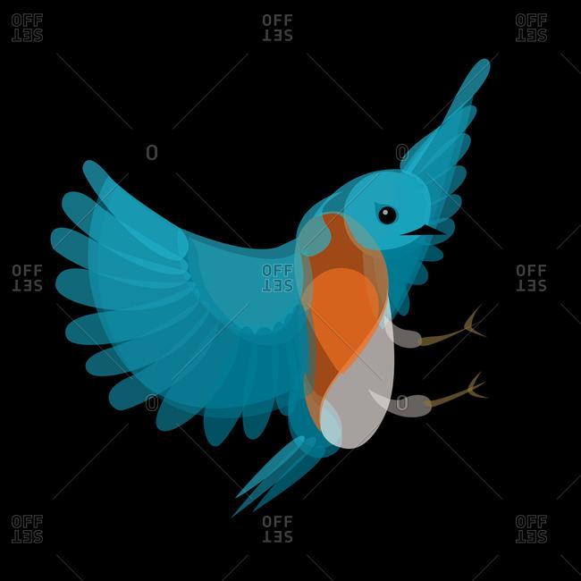 Bird landing with wings spread