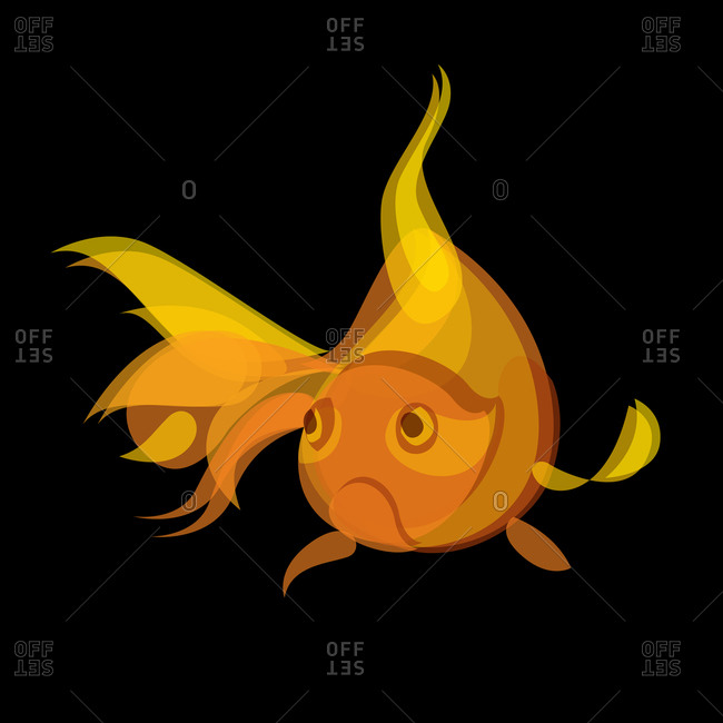 Illustration of a goldfish