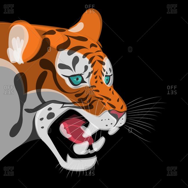 Illustration of a snarling tiger