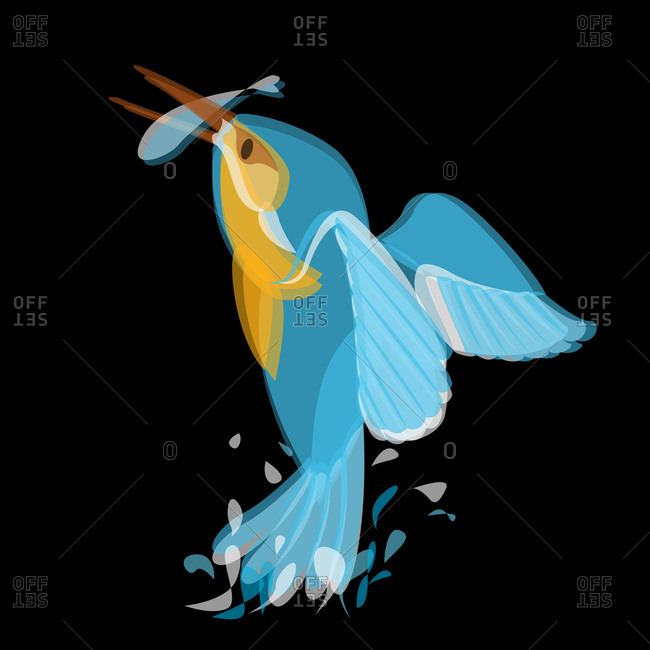 Illustration of a bird catching a fish