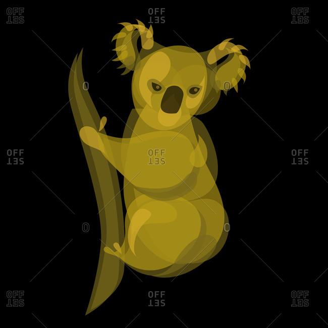 Illustration of a koala bear