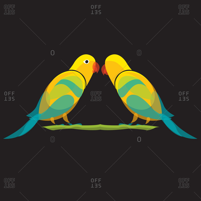 Two parakeets perched on a branch