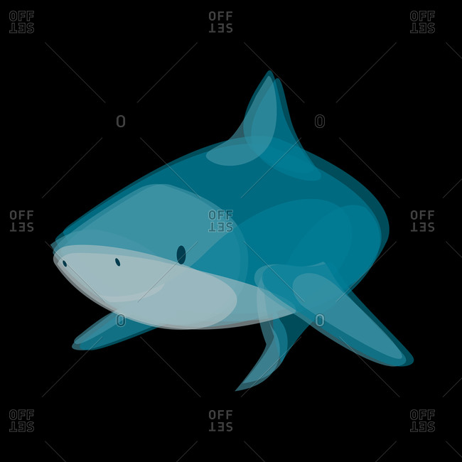 Illustration of a shark