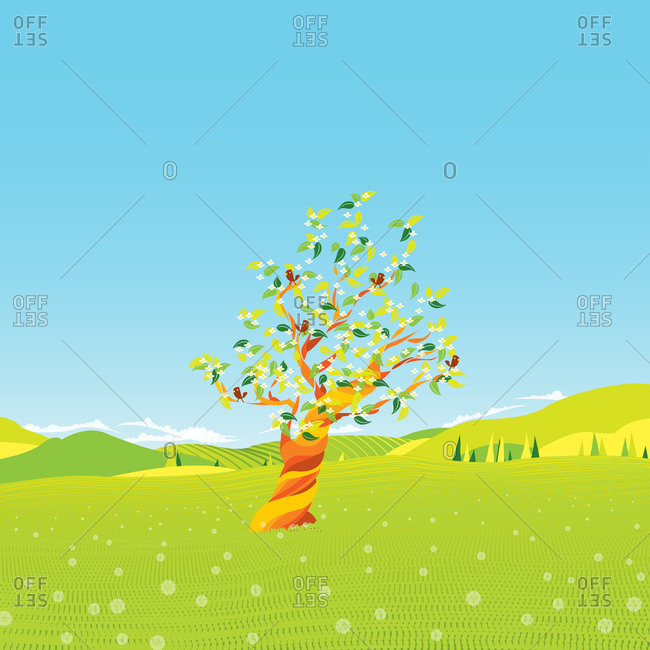 Tree with birds in the spring