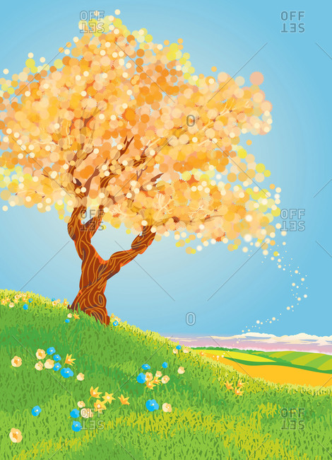 Tree on a hillside in spring
