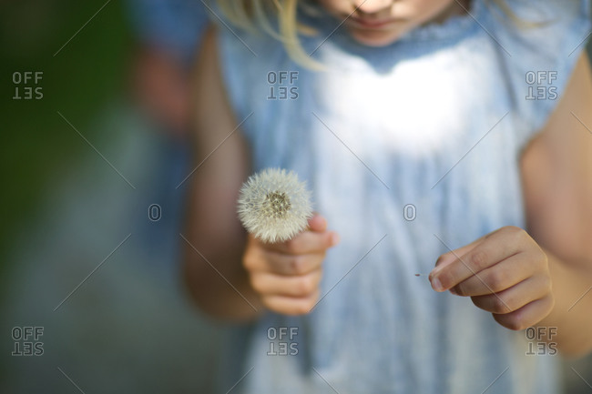 Girl with fresh thistle flower