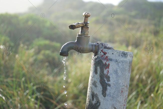 Water leaking from tap in field