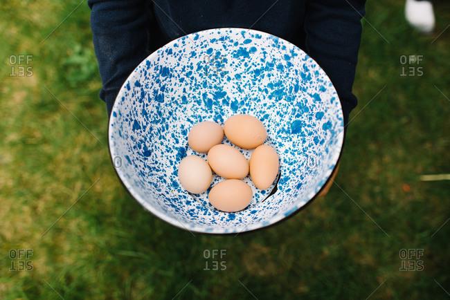 Bowl of fresh eggs