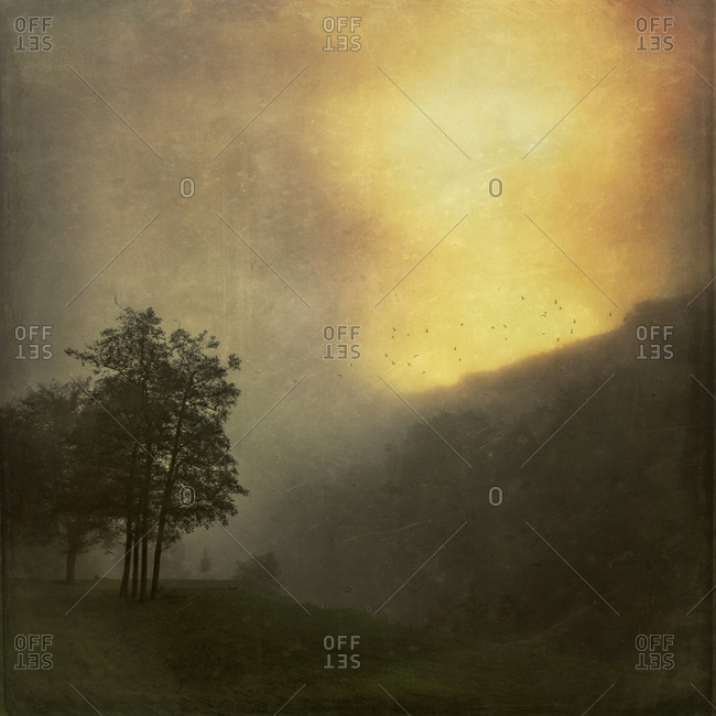 Landscape at sunrise in the fog