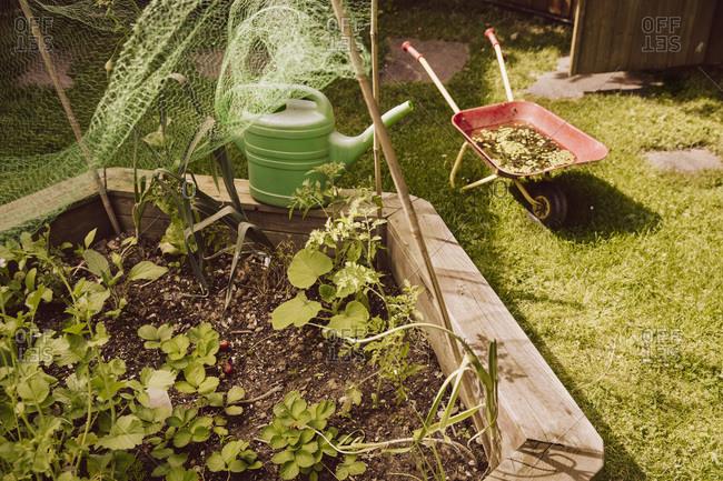 Private vegetable garden