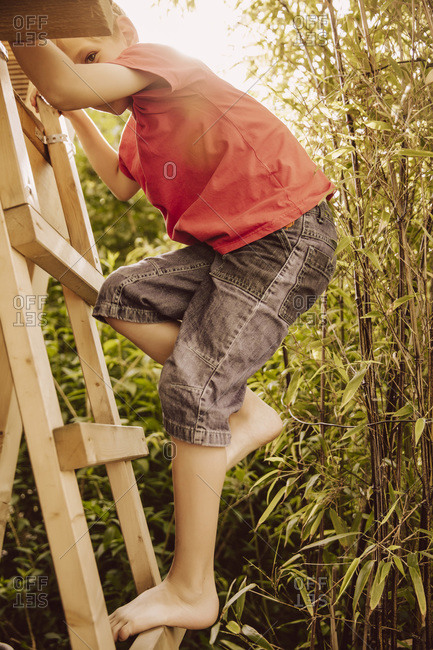 Boy climbing up a wooden ladder in a bamboo garden