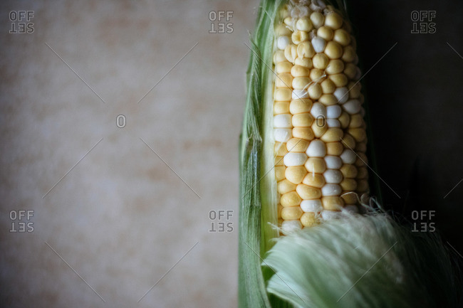 Single piece of corn on the cob